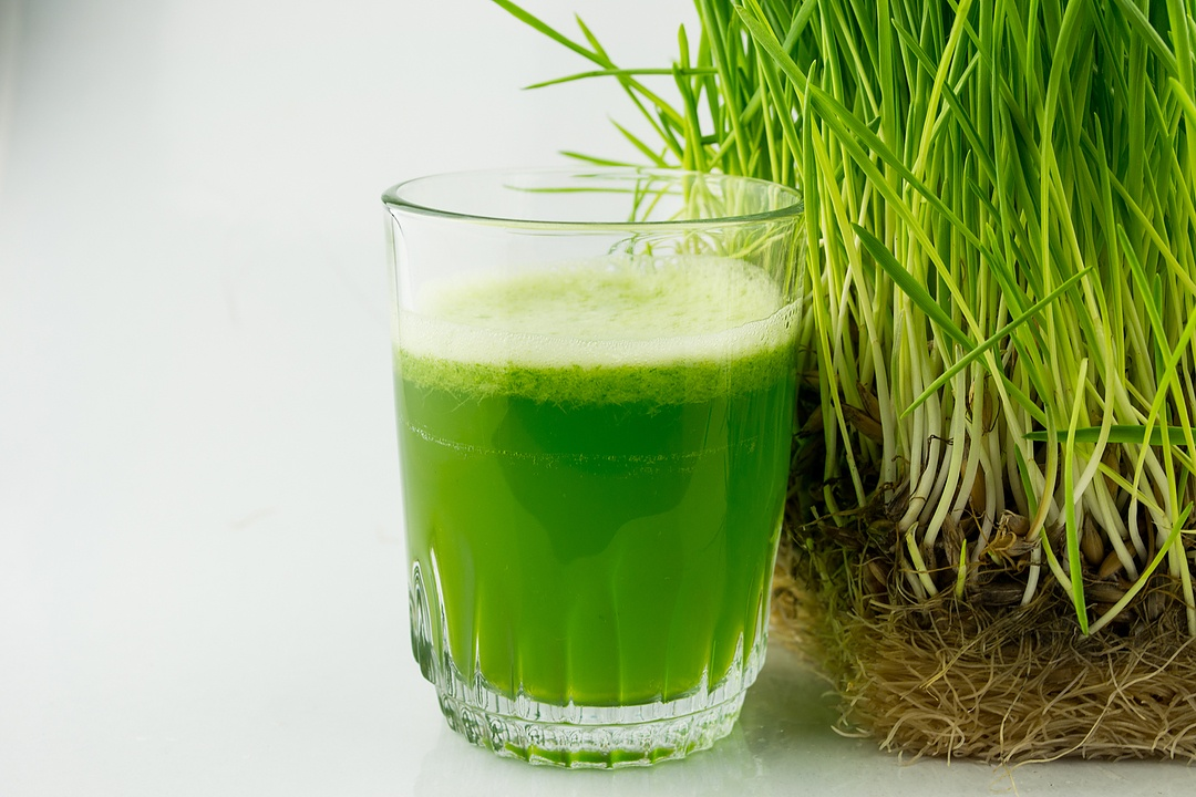 wheatgrass juicer amazon