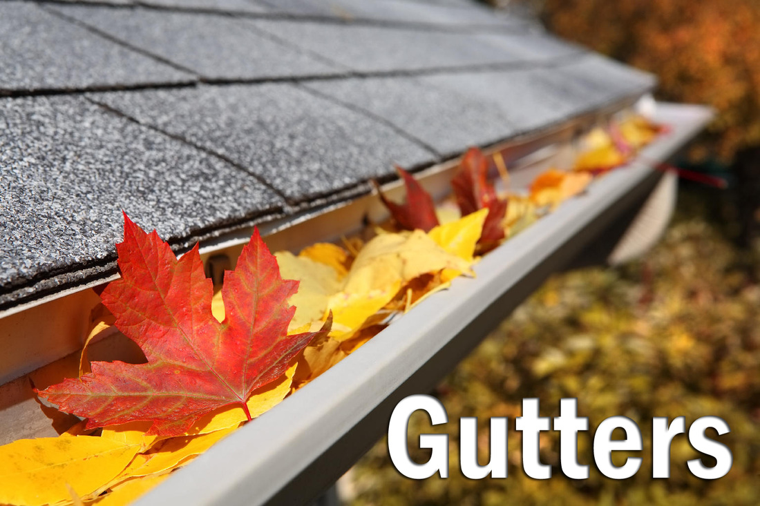 gutter brush reviews