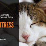 Zotto Mattress Review