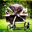 Best Pet Stroller Reviews: 10 Top Rated Pet Stroller Gear