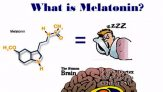 Melatonin Dosage- How Much Melatonin Should You Take For Optimal Sleep